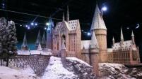 7969084_hogwarts
